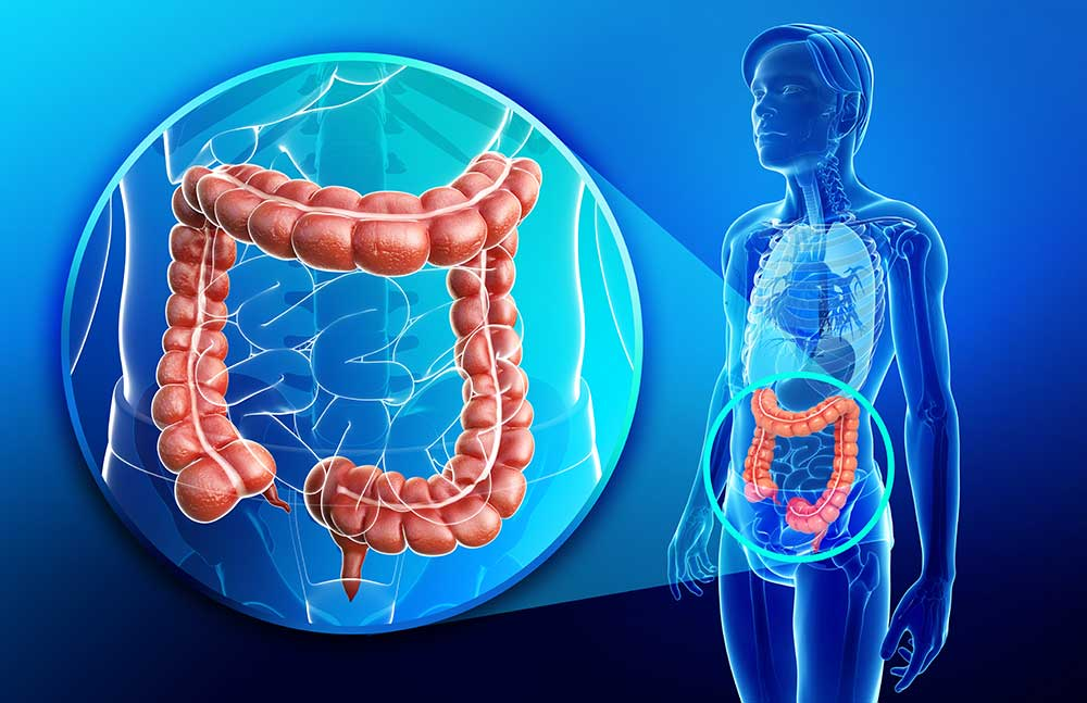 Colonics and Colon Hydrotherapy